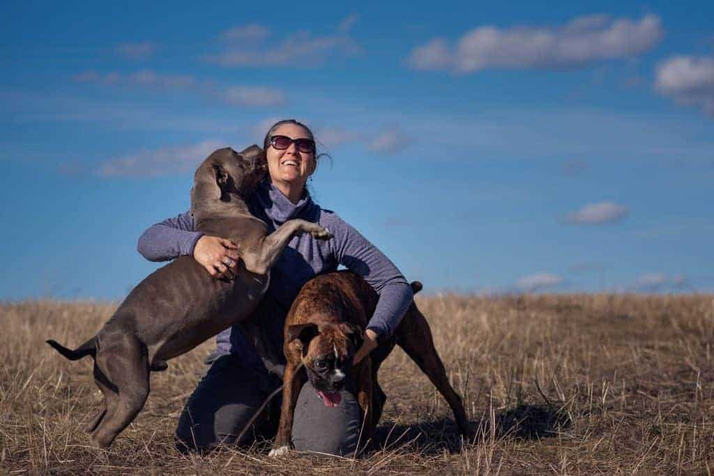 kisses from a Spokane Valley pitbull
