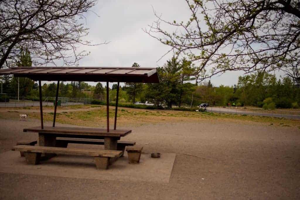 SCRAPS dog park