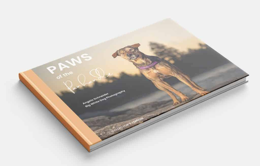 Paws of the Panhandle
